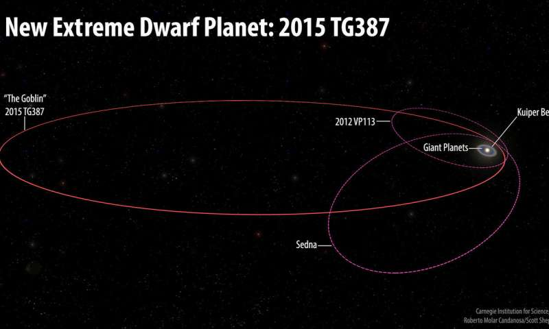 The orbits of the new extreme dwarf planet 2015 TG387 and its fellow Inner Oort Cloud objects 2012 VP113 and Sedna as compared with the rest of the Solar System. 2015 TG387 was nicknamed 'The Goblin' by the discoverers, as its provisional designation contains TG and the object was first seen near Halloween. 2015 TG387 has a larger semi-major axis than either 2012 VP113 or Sedna, which means it travels much further from the Sun at its most distant point in its orbit, which is around 2300 AU. Credit: Roberto Molar Candanosa and Scott Sheppard, courtesy of Carnegie Institution for Science.